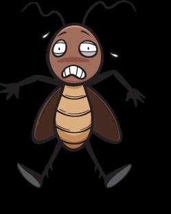 beetle-smashed